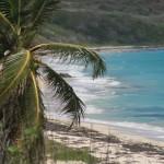 Cap Macré, Anse Grosse Roche - Martinique