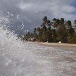 Martinique - Sainte-Anne - Plage des Salines