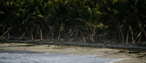 Plages Martinique Anse Macabou