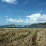 Lande de l'ilet Pinel