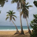 Martinique - Sainte-Anne - Les Salines